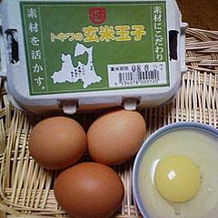 トキワ養鶏場